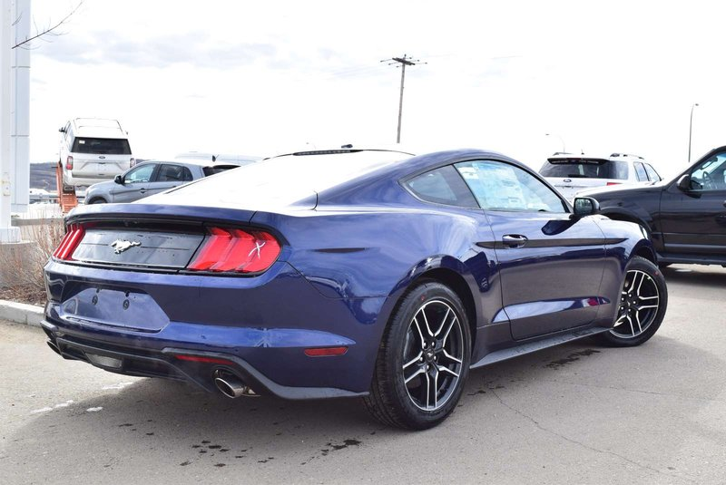 2019 Ford Mustang for sale in Peace River, Alberta