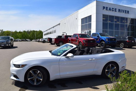 2017 Ford Mustang for sale in Peace River, Alberta
